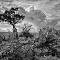 Hill Country Delight - Garner State Park Old Baldy