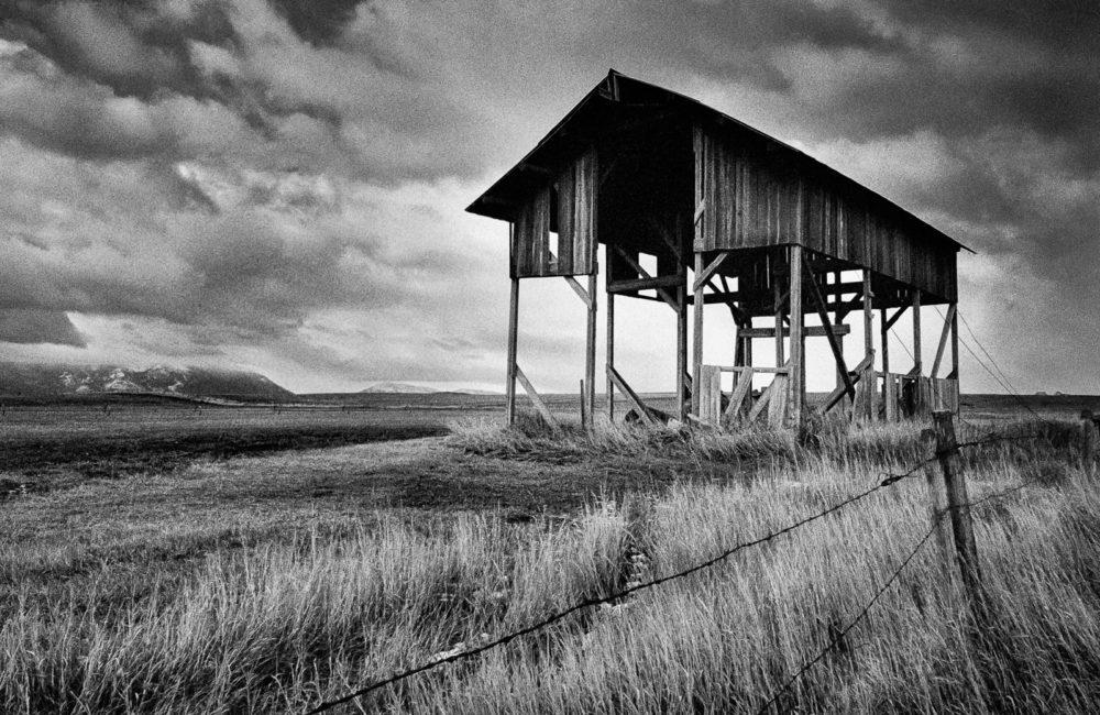 Skeleton - Black and White Landscape by Matt Mikulla
