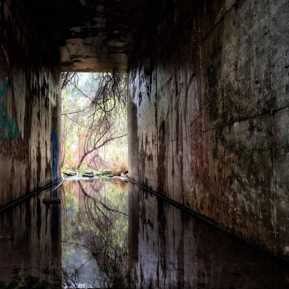 Cypress Creek Oasis - Austin Texas - Some Water is Hope