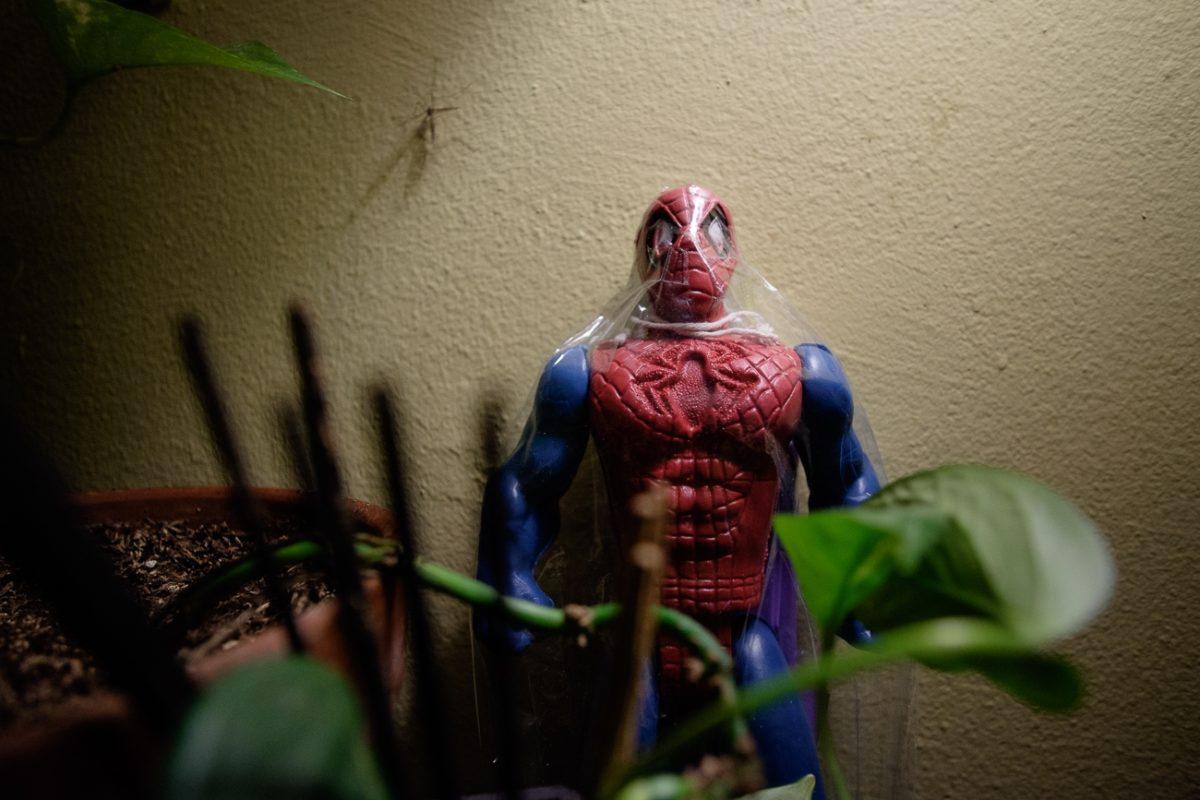 Spider Man Kite