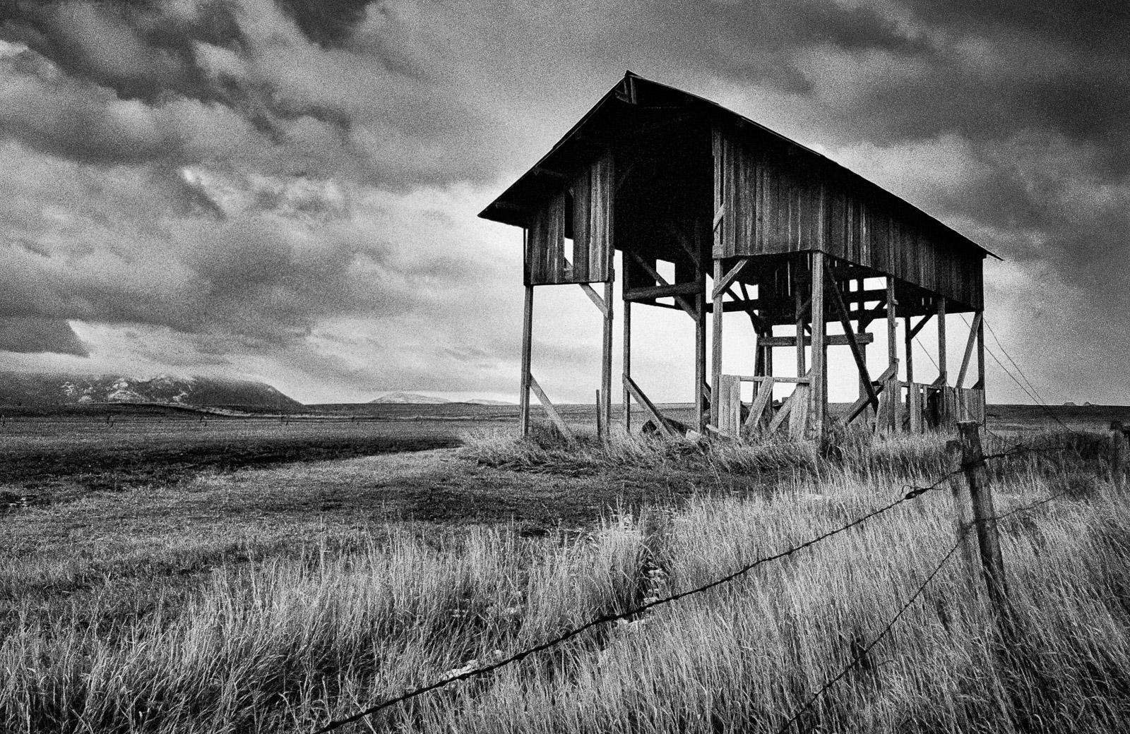 Skeleton black and white landscape by matt mikulla